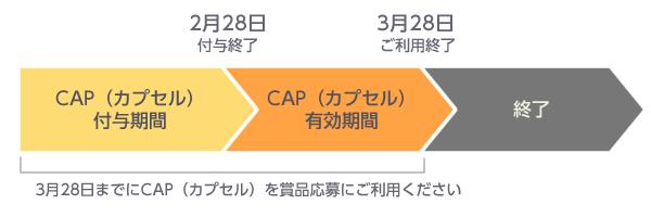 CAP(カプセル)のご利用期間のご案内