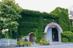 日本ワインを世界レベルに引き上げた女性醸造家の想い