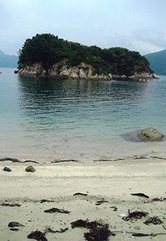 沖鍋島全景