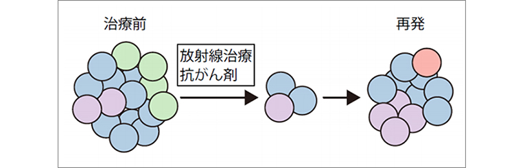 29079_fig01.jpg