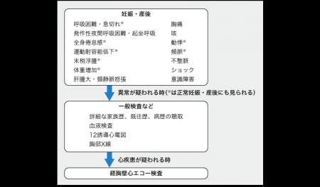 日本初の『周産期心筋症診療ガイドライン』作成