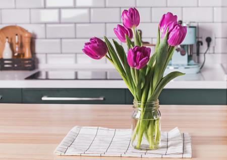 花の画像でストレス緩和
