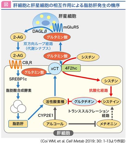 jddw2020_fig2.jpg
