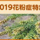 kafun2019_top_380.jpg