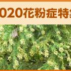 kafun2020_top_380.jpg